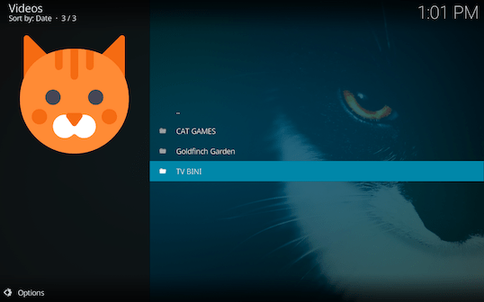 Screen Shot 2018 03 06 at 1.01.37 PM - Cat TV for Kodi: Endless Fun for Cats and Kittens of All Ages
