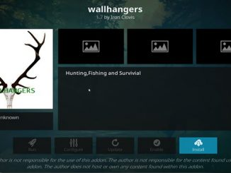Wallhangers Addon Guide - Kodi Reviews