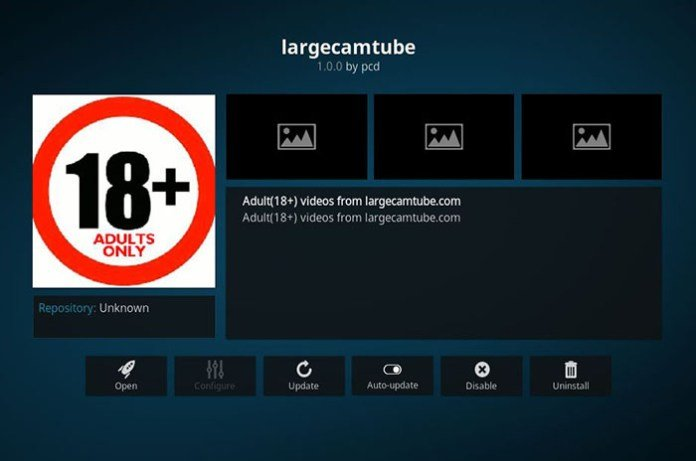 Adult Addons for Kodi -Largecamtube