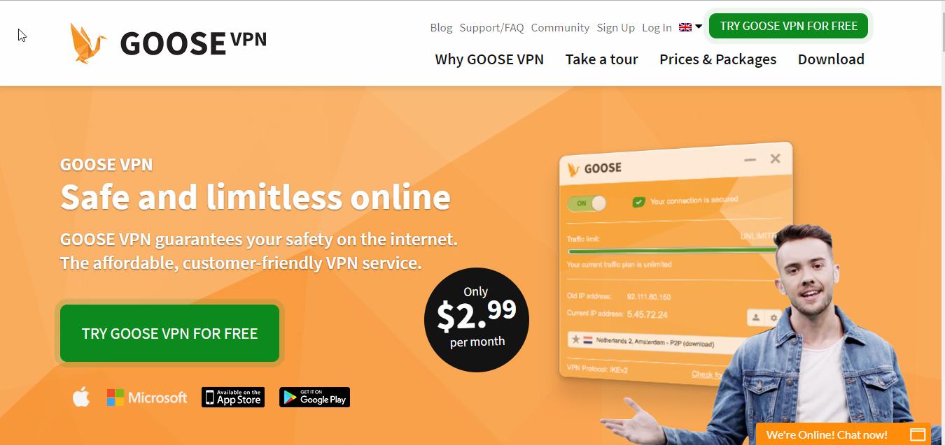 GOOSE VPN Homepage