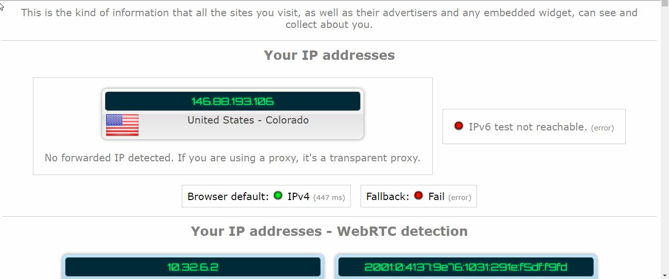 GOOSE VPN DNS Leak Test