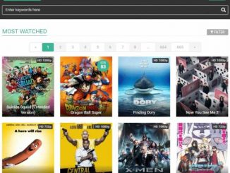 FMovies Loses Control of Swedish Domain, Moves to Iceland