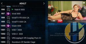 adult IPTV xxx