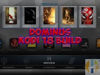 Dominus Build