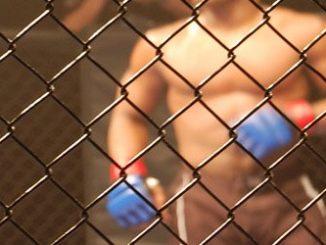 UFC 246 Twitch Piracy Fail Raises Questions For Amateur Pirates & UFC Alike