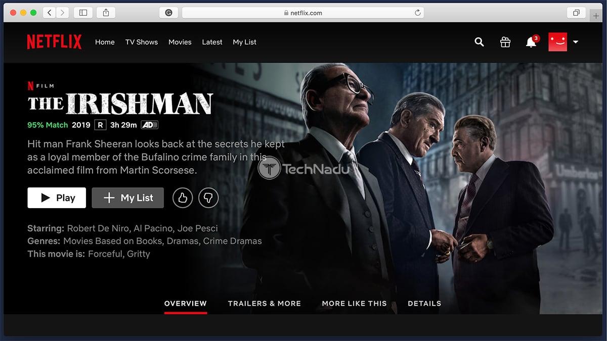 Netflix Synopsis The Irishman