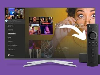 Facebook Watch on Firestick: How to Install & Use
